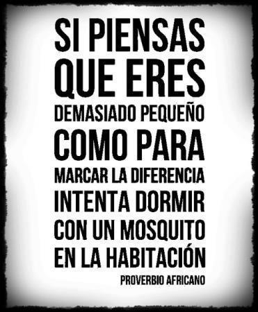 C mo sacar el mosquito africano que todos llevamos dentro - Como eliminar a los mosquitos de mi cuarto ...