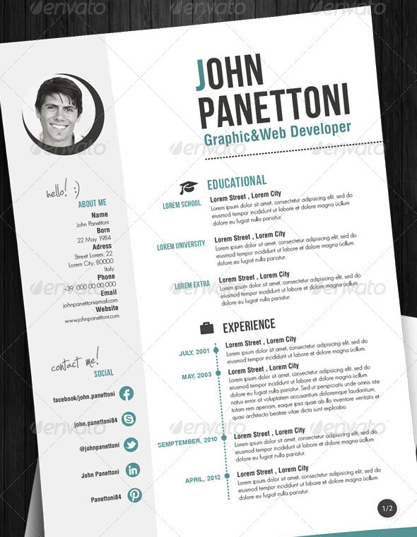 Professional Easy Resume