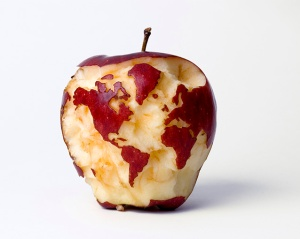 apple globe web