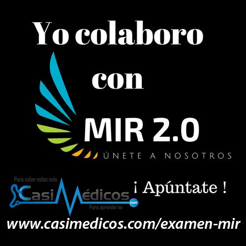 MIR-2b